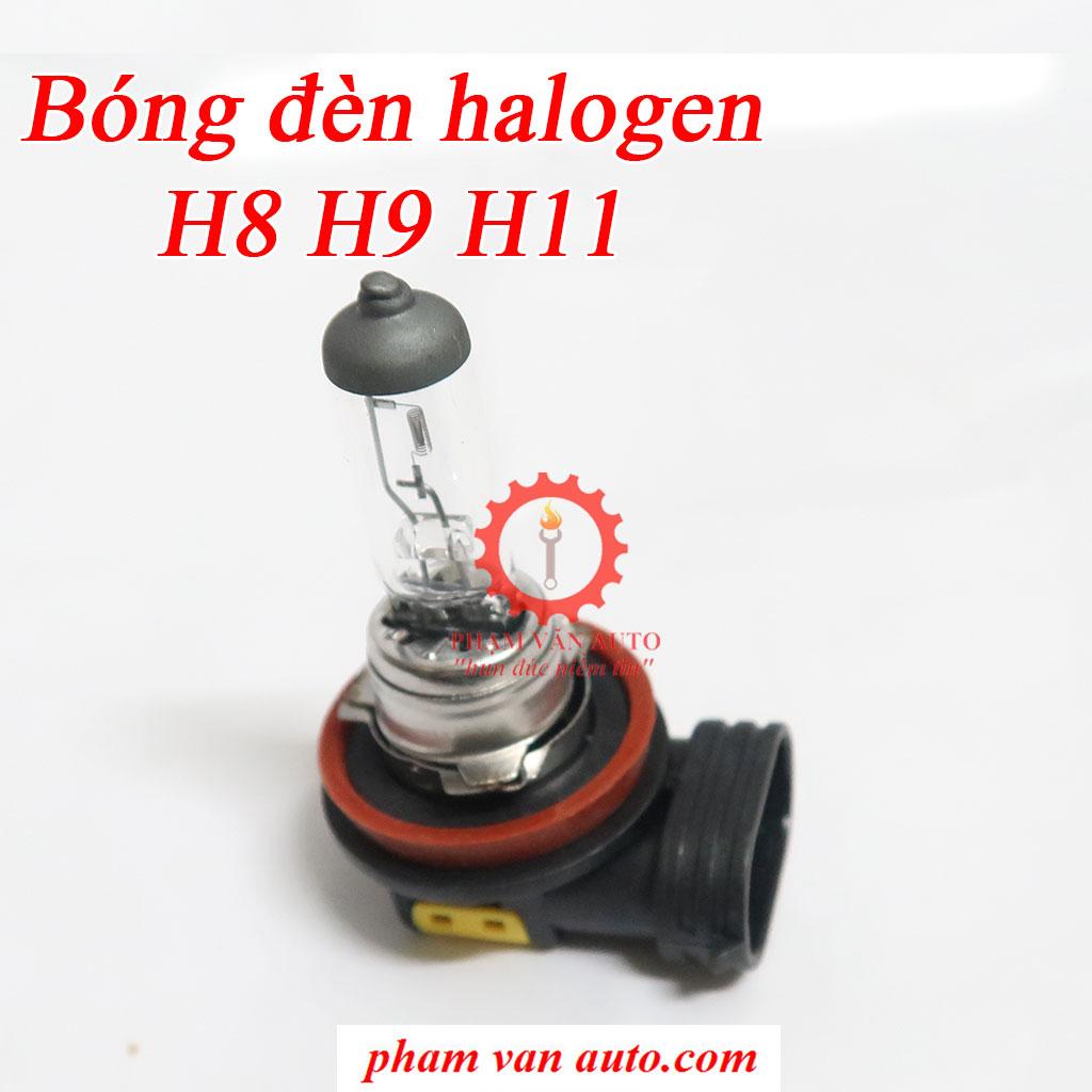 Bóng đèn Halogen chân H8 H9 H11 lắp cho xe ô tô hàng cao cấp giá rẻ